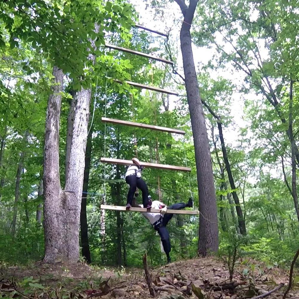 Giant ladder2